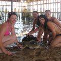 Turtle Island Nusa Dua 4